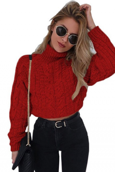 Long Sleeve Sexy High-Necked Knit Sweater
